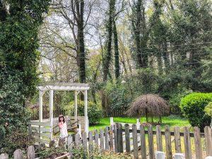 Backyard Landscaping Progress - Bless'er House