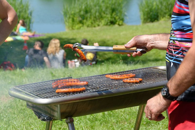 Electric Grill vs Gas Grill – Which is better?